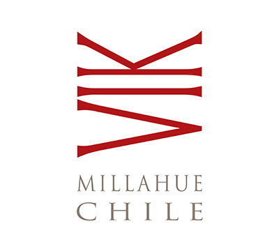 VIK - Millahue Valley - Chile
